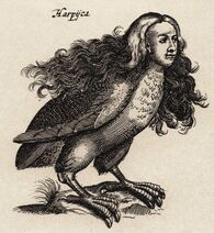 Harpij