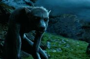 Remus Lupin - Werewolf