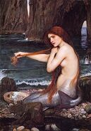 Waterhouse a mermaid