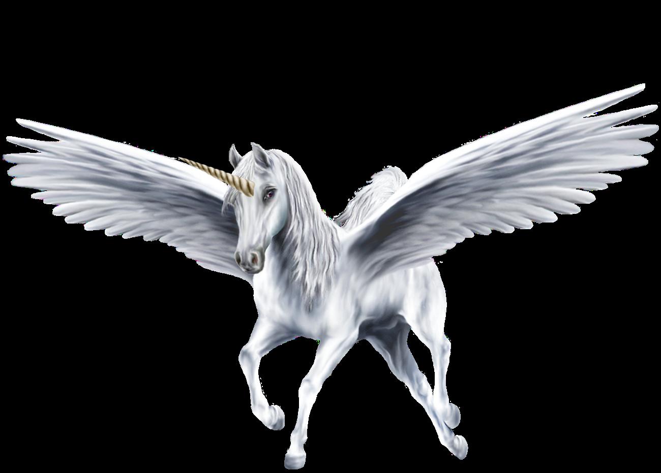 alicorn mythology wiki fandom powered by wikia