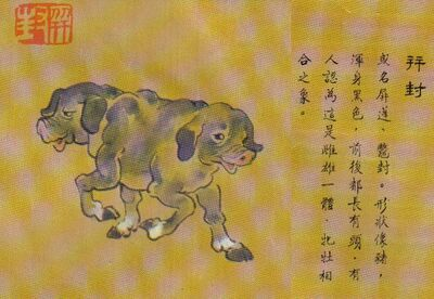 Baifeng