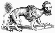 21. Topsell's Manticora (1607)