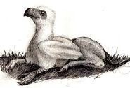 Hippogriff-0