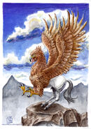 Hippogriff 8