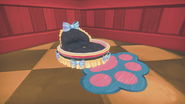 Cat's Bed dyed black