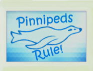 Art Pinnipeds