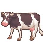 Catchcow cow