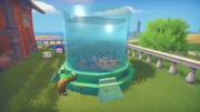 Large Fish Tank Gallery
