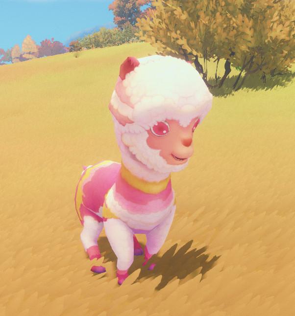 Fichier:Colorful Llama.jpg
