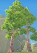 White Tree Full