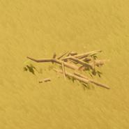 Gathering Wood