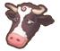 Catchcow ico cow