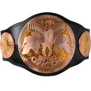 WWE Tag Team Championship 2010