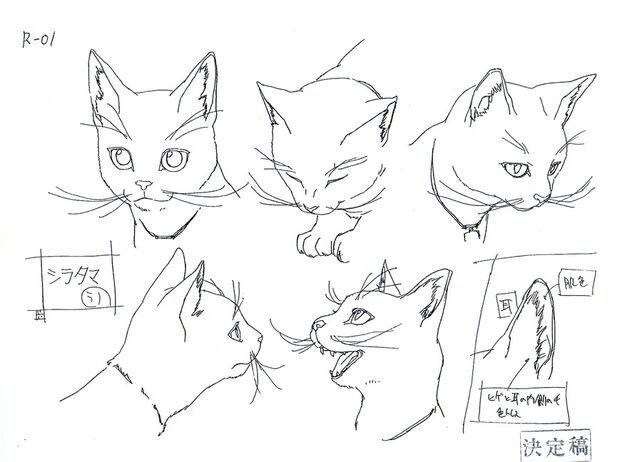 File:Cd20-shiratama-faces.jpg