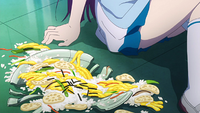 The broken dish