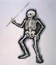 NM2DBSkeleton