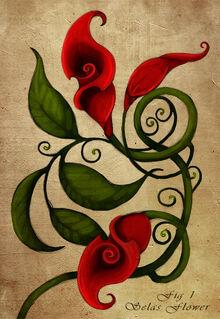 Selas Flower