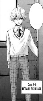 Hotaru Appearance