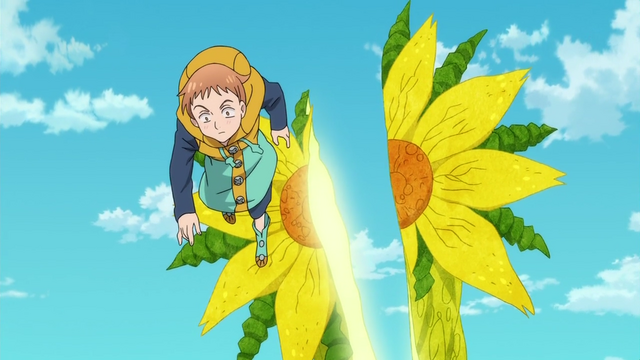 File:Sunflower cut in two.png