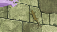 Chimera Lizard Anime