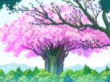 Bosque del Rey Hada