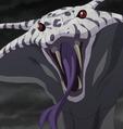 Melascula en su forma de serpiente