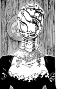 Masked Holy Knight