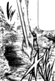 Ban attacking Meliodas.png