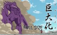 Fraudrin using Full Size