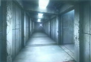 Hallways 1