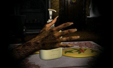 Linda's Arm