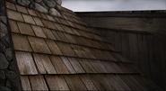 Malone cabin roof