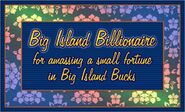 Big Island Billionaire