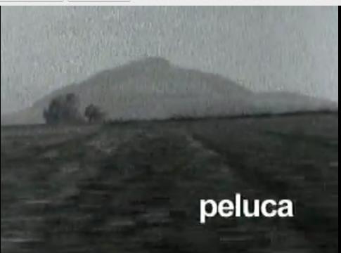 File:Peluca.png