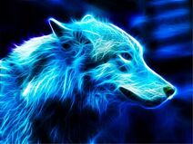 Wolf-Wallpapers-Free-Download-014