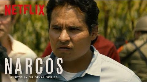 Narcos Mexico Meet Agent Kiki Camarena HD Netflix