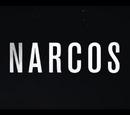 Narcos Wikia