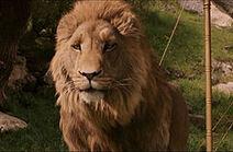 Aslan2005