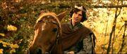 830px-Edmund horse