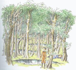 Woodbetweenworlds