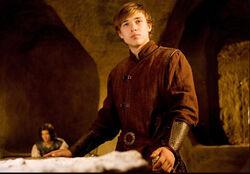 Peter in Narnia
