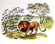 Aslan créant Narnia