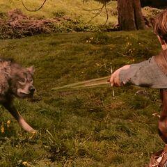 Питер против Маугрима