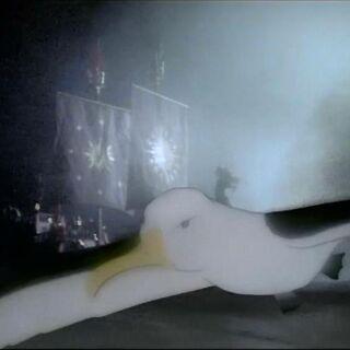 Появление альбатроса