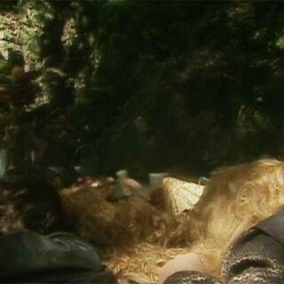 Спящие лорды в сериале