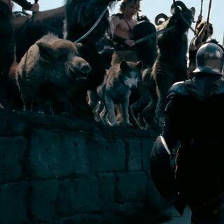 Волк в армии Каспиана