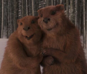 Thebeavers
