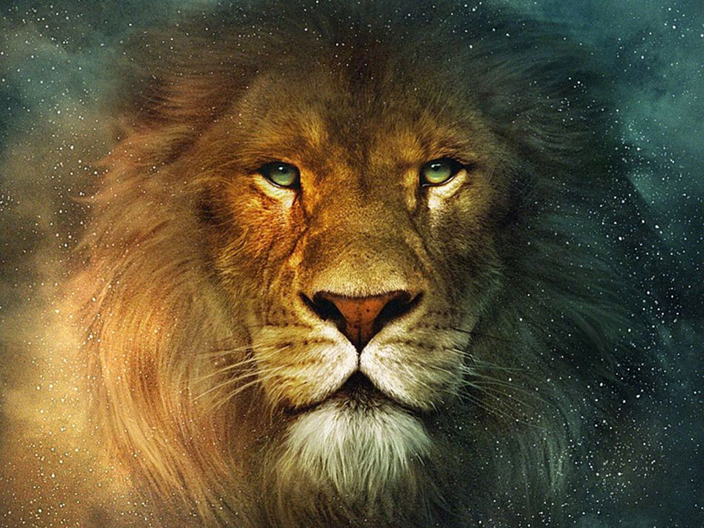 Image - Aslan-Lion-The-Chronicles-of-Narnia-Wallpaper.jpg | The ... for Narnia Aslan Wallpaper  lp00lyp
