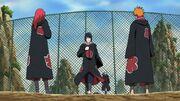 Team Hawk in Akatsuki