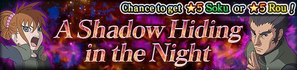 A Shadow Hiding in the Night Banner